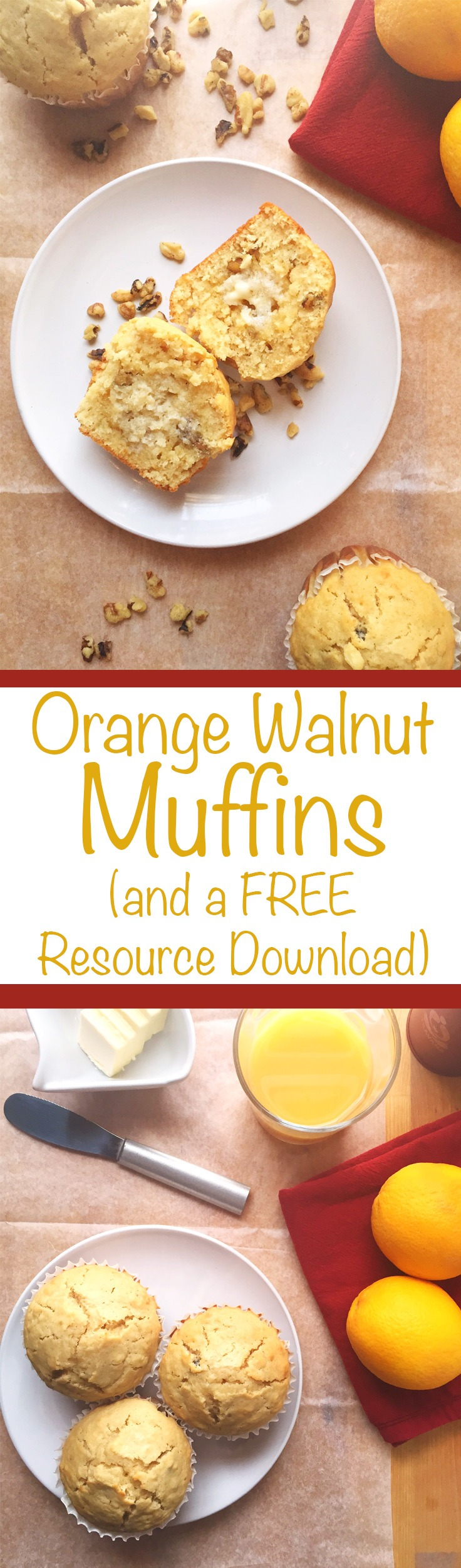 Orange Walnut Muffin Recipe (and a FREE Resource Download). Do you struggle getting your muffins to have high tops? How about making sure they're moist? In this Orange Walnut Muffin recipe post, we'll demonstrate how to make a moist, high-top muffin. We're even giving you a FREE Resource download for this recipe. Click through to get the goods!